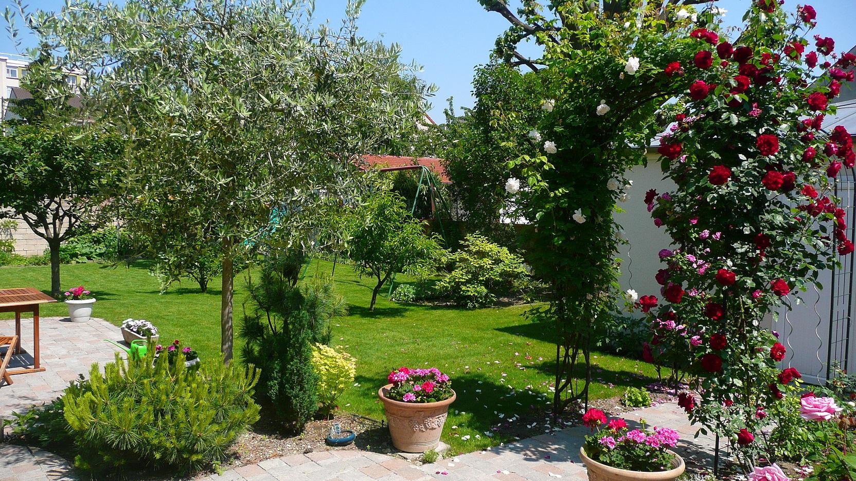 Préservons l'ensoleillement de nos jardins